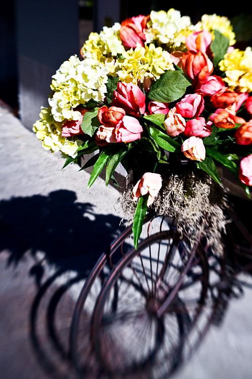 20080901175701_bouquet_biciclete.jpg