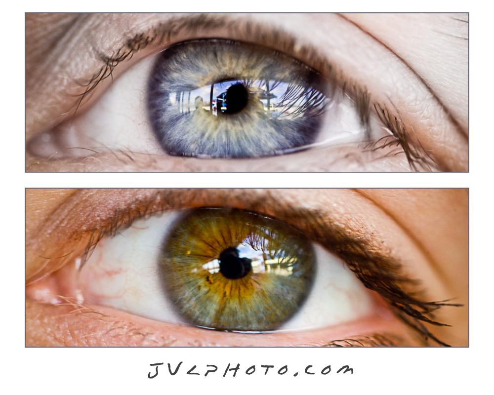 20090329143036_eye_spy.jpg