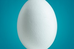 20120118143855_twitter-egg.jpg